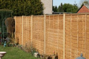 Fencing - New boundary fence